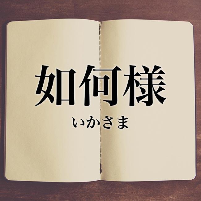 如何様」とは?意味・読み方・英語【使い方や例文】 | Meaning-Book