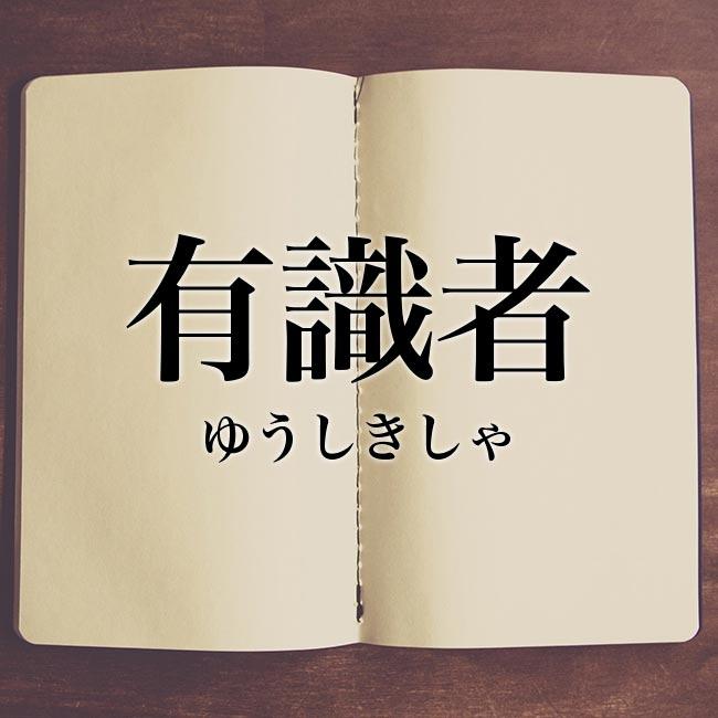対義語 プロフェッショナル 「プロフェッショナル」の意味や類語を徹底解説!英語表現も紹介