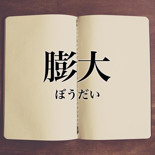 膨大」とは?意味や類語!例文と解釈 | Meaning-Book