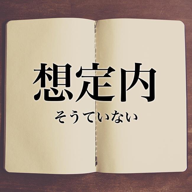 想定内」の意味とは!類語や例文など詳しく解釈 | Meaning-Book