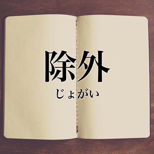 meaning-bookは意味解説の読み物です「除外」とは?意味や使い方!例文や解釈
