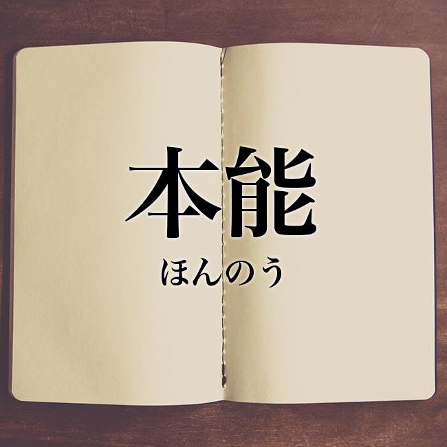 本能」とは?意味や使い方!例文や解釈 | Meaning-Book