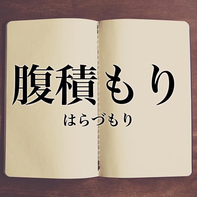 腹積もり」の意味とは!類語や例文など詳しく解釈   Meaning-Book