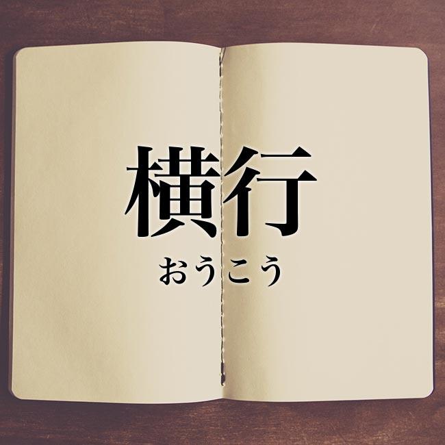 横行」の意味とは!類語や例文など詳しく解釈 | Meaning-Book