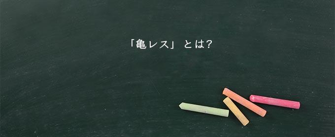 亀 レス 失礼 意味